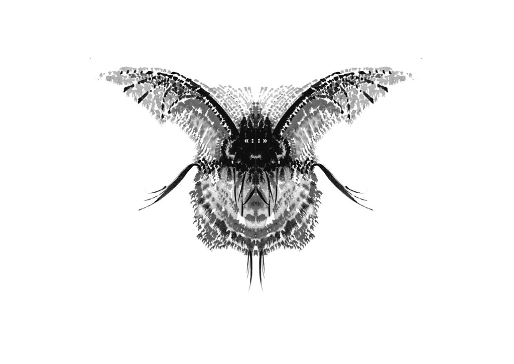 Edition insectes_Page_01