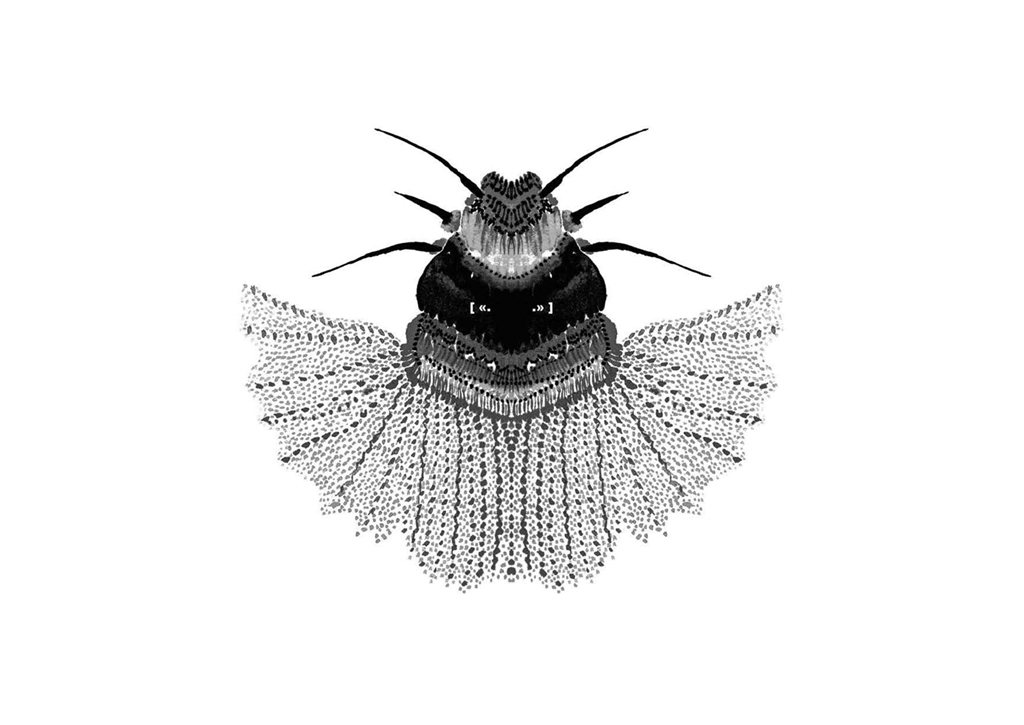 Edition insectes_Page_08