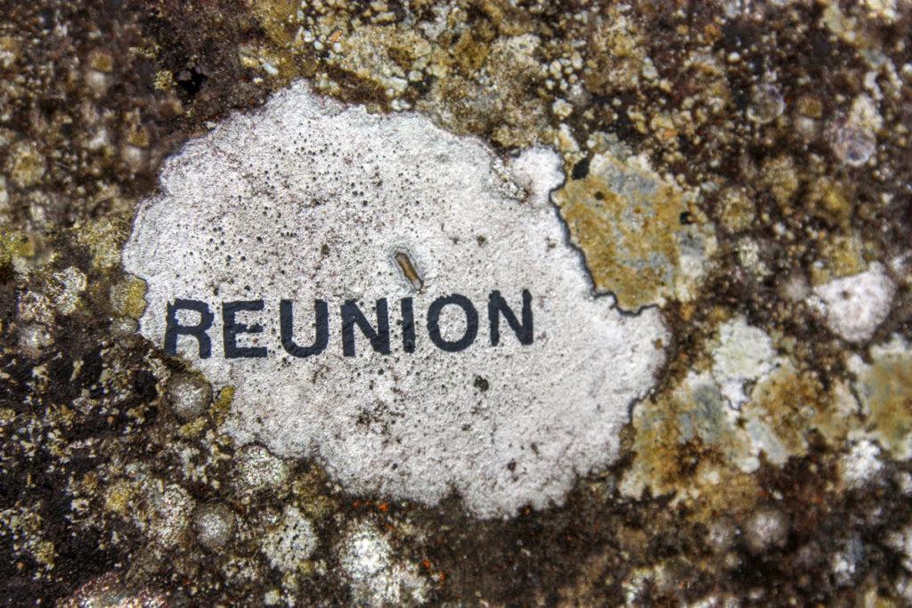 reunion-IMG_8069-A2