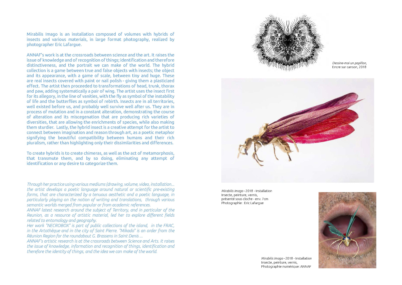 CATALOGUE MUTATION HYBRIDATION 7